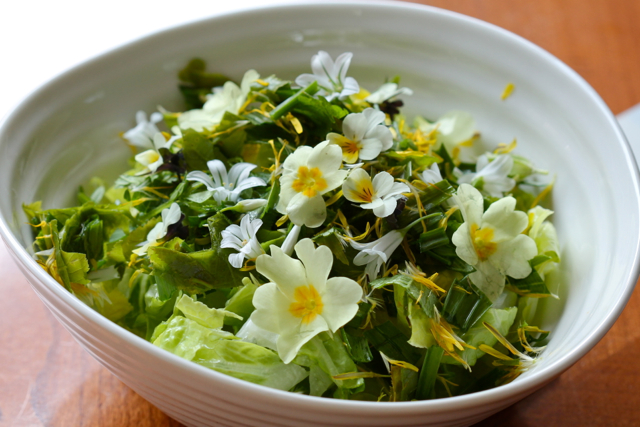 spring wild green cuisine   whispering earth