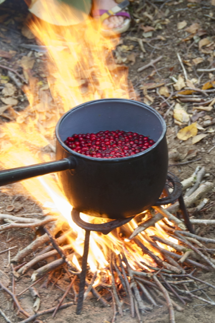 Berries simmering over the fire with hazelnuts roasting in a shallow pit beneath.