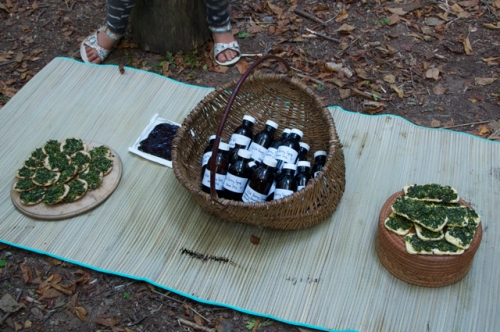Food and medicine from the Earth.