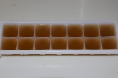 Medicinal mushroom stock ice cubes